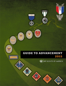 guidetoadvancement2015